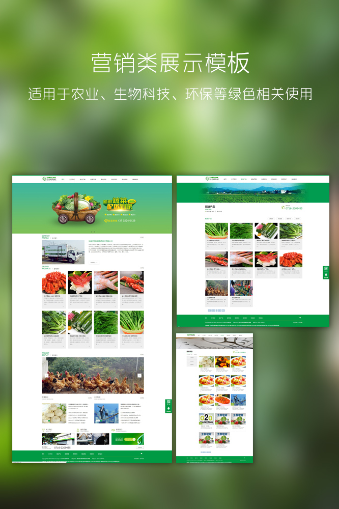 营销类展示bob体育app官方网